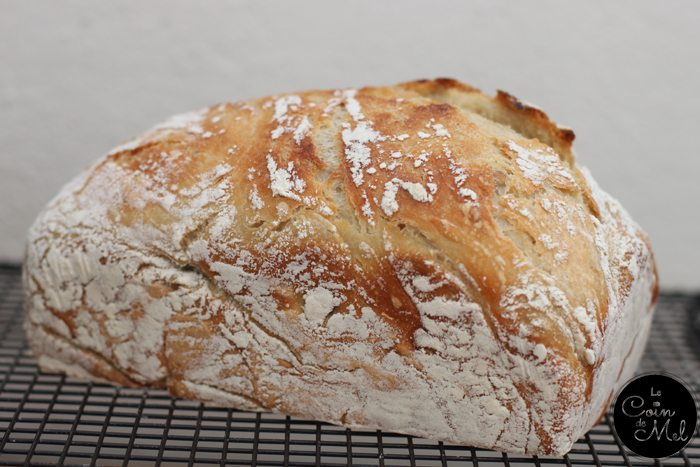 Crusty Bread in Loaf Tin
