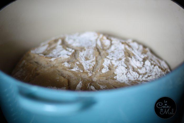 Easy Crusty Bread in Le Creuset
