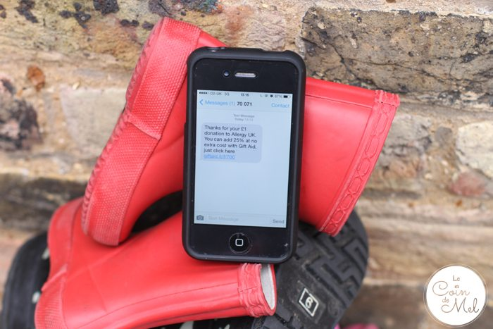 Give It Some Welly - Donate by Text