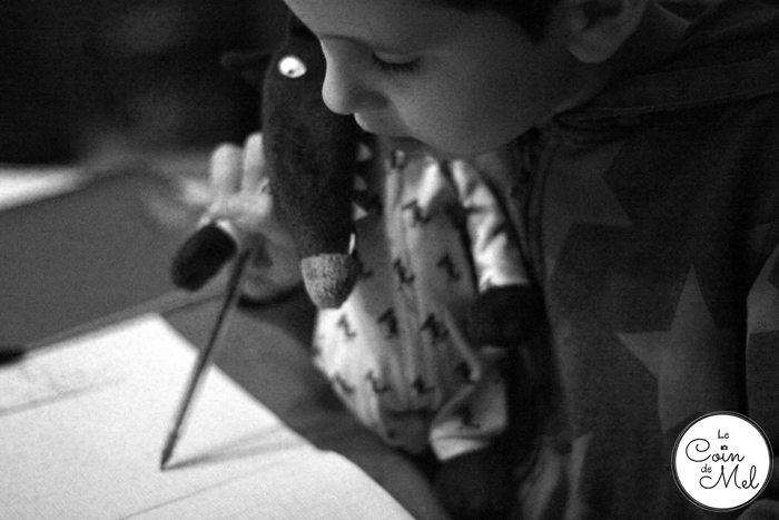 Le Loup and Crevette doing Homework