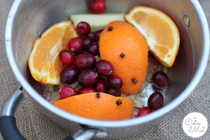 Mulled Wine - Fruit and Spices