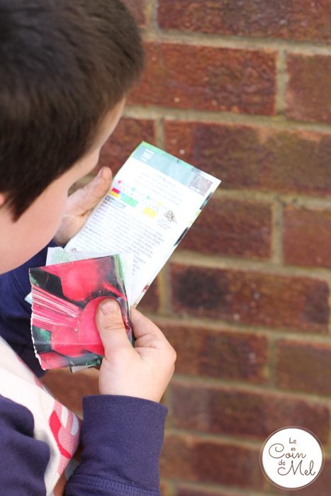 Gardening - Checking Instructions on the Seed Packets