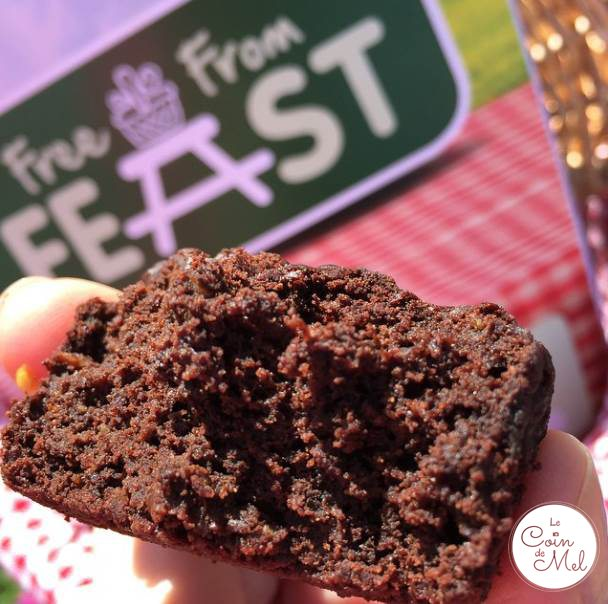 #FreeFromFeast - Nath's Free From Chocolate Cupcakes