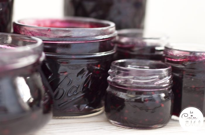 Quick & Easy Blackberry Jam
