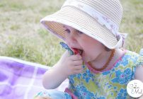 Strawberry Picking & a Picnic with a Difference