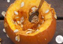 Pumpkin Festival at Willows Farm & Fun Facts