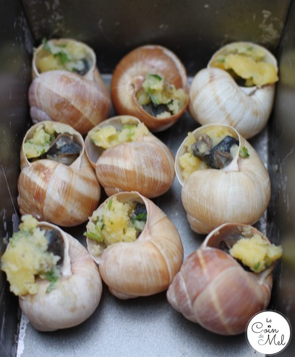 Snails & Garlic Butter