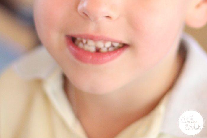 Crevette - Tooth