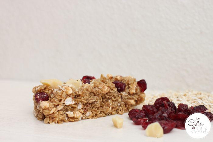 Cereal Bars with Plamil Chocolate