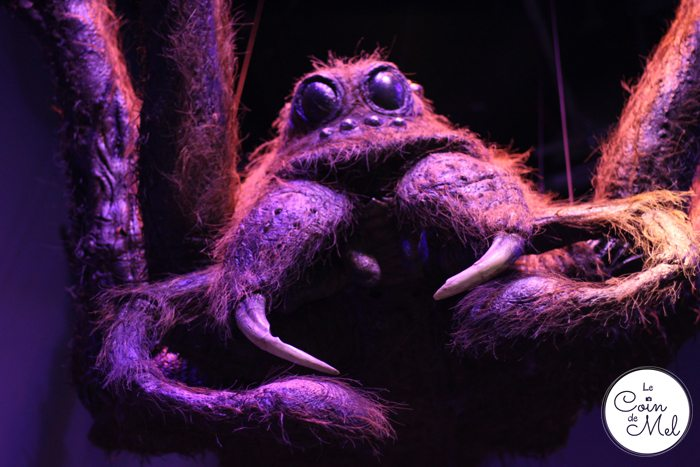 Harry Potter - Animatronics - Aragog