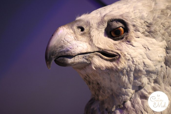 Harry Potter - Animatronics - Buckbeak