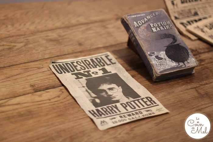 Harry Potter - Undesireable