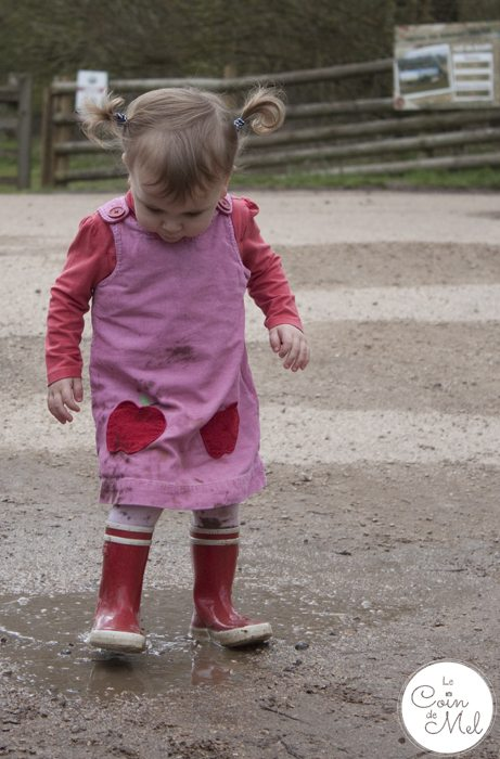 How to Make the Most of your Day at Willows Activity Farm - Muddy Girl