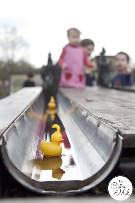 How to Make the Most of your Day at Willows Activity Farm - Rubber Duck