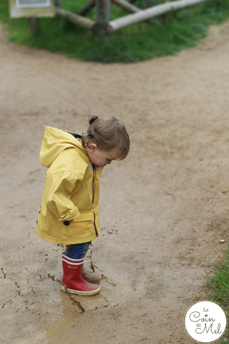 A Rainy Day at Willows Farm & a Few Facts about Sheep Shearing - Muddy Puddles