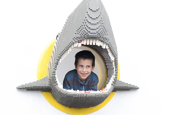 Birthday Party of a Lifetime at Legoland - Shark