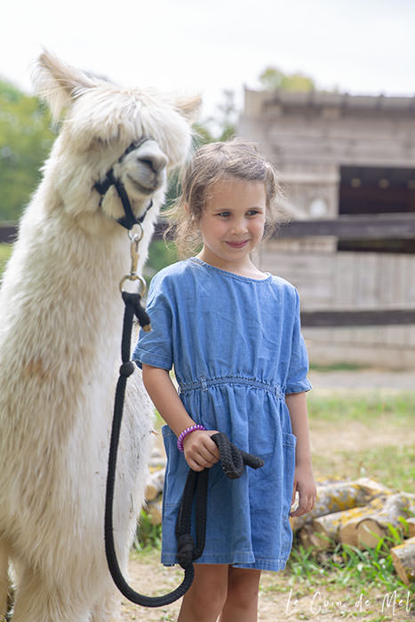Wriggly holding on to an alpaca at La Ferme Souchinet