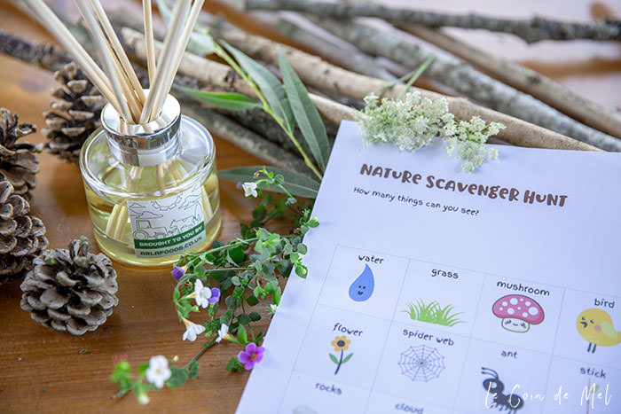 Our Nature Scavenger Hunt printable, with a few of the items we collected