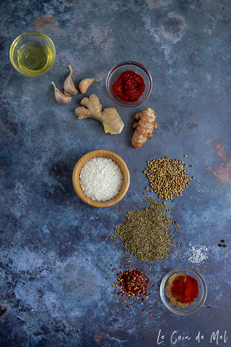 Nut-free Korma Paste Recipe - A Quick & Easy Staple: on a dark blue background, are the ingredients included in the recipe: garlic, coconut, garam masala, cumin seeds, fresh turmeric, peppercorns, salt, paprika, fresh ginger, chilli flakes and coriander seeds